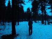 Cold colors.