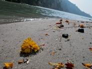 Ganga karma