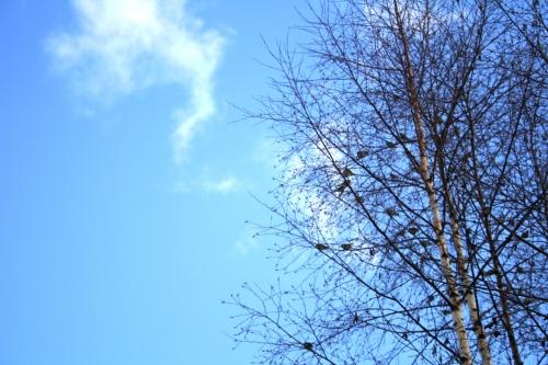 Spring, I feel you!